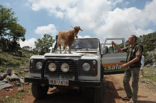igoumenitsa-transfer-jeep-safari08